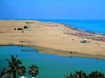 Oasis Playa Maspalomas 201