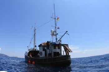 Boat MS Cutty Jean 215