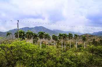 Caribbean Beachfront Villa