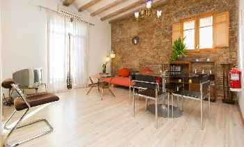 Pintor III Big three bedroom apartment with a lovely roof terrace near the sea Old Town Barcelona