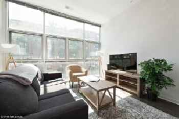Converted 3BR/2Bath in Lincoln Park 219
