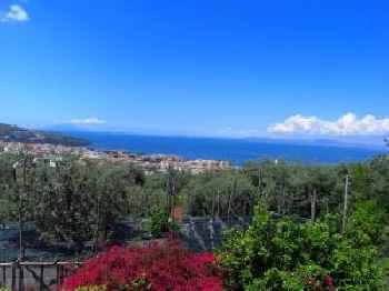 Boutique Mansion in Sorrento with picturesque view 220