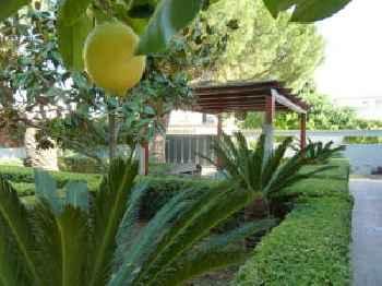 Villa Alfano 201