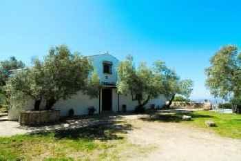 Casa Olivos 223