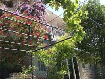 Apartments Stari Pavle 201